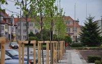Przebudowa i zagospodarowanie Placu Wolności w Biskupcu