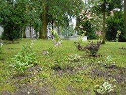 Projektanci ogrodów i ich prace w Biskupcu